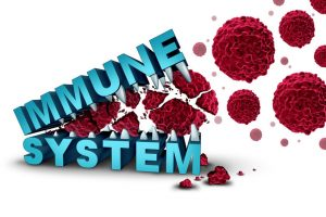 Strong immune system silently attach invaders that will cause harm to your body.