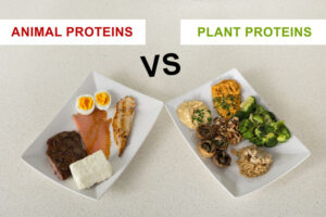 It is important to protein from various sources such as plant foods.